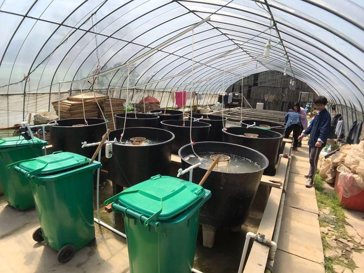 发酵料受大力追棒,但养殖户在塘头自扩培繁发酵液,真的好吗?