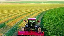 农业技术与建筑基础