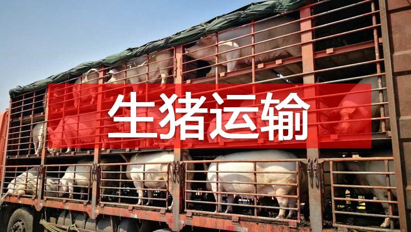 兽医管理 | 欧美有关国家生猪运输环节生物安全措施及启示