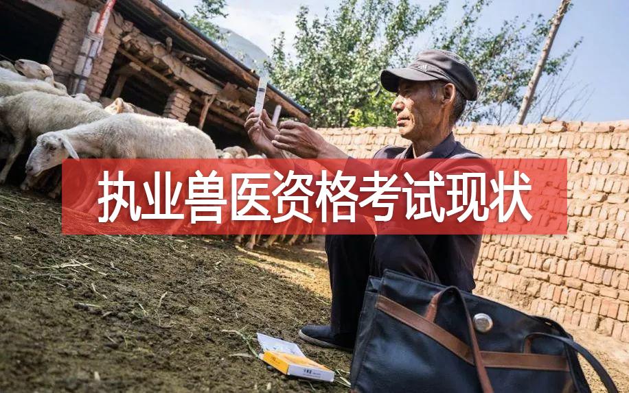 兽医管理 | 2010—2019年安徽省执业兽医资格考试现状