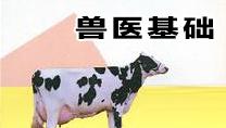 畜牧兽医基础