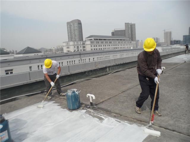 没你想的那么难,零基础,快速学会屋顶防水